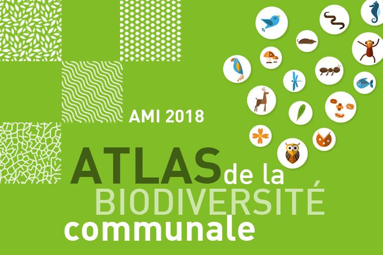 Une opportunité pour connaître la biodiversité de votre commune : l'Atlas de la biodiversité communale